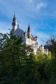View of Neuschwanstein Castle on a late summer day, Oberallgäu, Bavaria, Germany