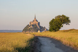 View over the salt marshes to the rocky island of Mont Saint Michel with the monastery of the same name, Normandy, France.