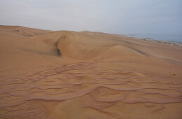 Angola; in the southern part of Namibe Province; northern part of the Namib Desert; Iona National Park; Sand dunes on the Atlantic coast