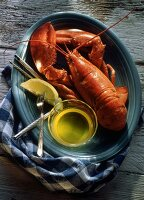 Boiled Lobster on Plate with Drawn Butter