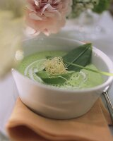 Whipped ramsons (wild garlic) soup