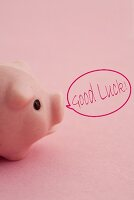 A lucky pink pig with the words 'Good Luck' in a speech bubble