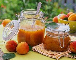 Aprikosenmarmelade und frische Aprikosen