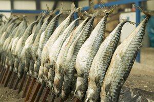 Steckerlfisch (skewered fish) at Oktoberfest