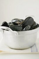 Mussels in pan