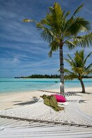 Lagune, Hängematte mit rotem Kissen, Insel Veliganduhuraa, Malediven