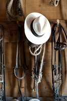 Horse bridles and white hat hanging on hook, Maremma, Italy
