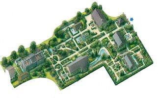 Garten, Zeichnung, Planung, von oben Gestaltung, Vogelperspektive