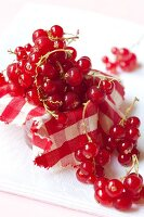Redcurrants on a checked cloth
