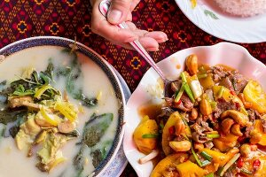 Khmer banana flower soup, and beef with cashews and pineapple, Battambang, Cambodia