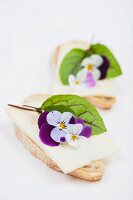 Olive baguette topped with alpine cheese, bloodwort leaves and tufted pansies