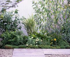 Terrasse vorher ohne Shin Yong