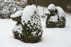 Formgeschnittene Tierfiguren im verschneiten Garten