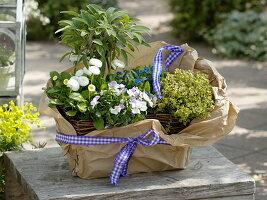 Korbkasten mit Kräutern und eßbaren Blüten als Geschenk