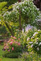 ANDRE EVE Garden, FRANCE -ROSE Natalie AND ROSE BELLE Helene
