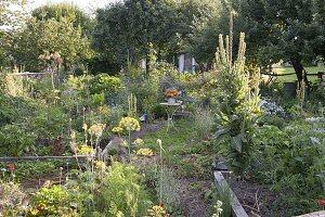 Kleiner Sitzplatz zwischen Beeten mit Gemüse, Kräutern, Stauden