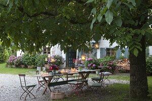 Sitzgruppe unterm Walnussbaum vorm Haus