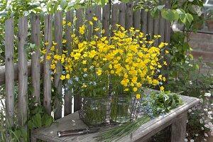 0 - Euro Straeusse von der Wiese : Ranunculus acris (Butterblumen