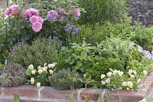 Gemauertes Hochbeet mit Kräutern und essbaren Blüten