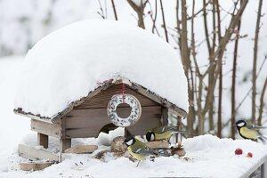 Verschneites Futterhaus mit Meisenring