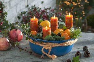 Blaue Schüssel mit Orangen, Clementinen (Citrus), Zweige von Pinus