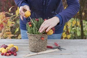Thymian herbstlich dekoriert mit Früchten