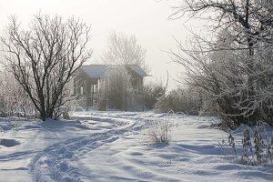 Spur durch den verschneiten Garten führt zum Teehaus, Gehölze mit Rauhreif