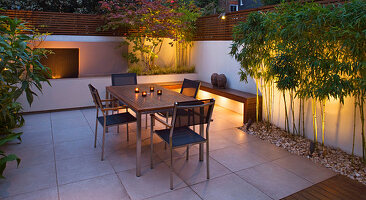 FULHAM Garden DESIGNED by AMIR SCHLEZINGER - MY LANDSCAPES: Minimalist Garden LIT UP at NIGHT - EDGEWORTHIA CHRYSANTHA, Acer ACONITIFOLIUM, TABLE AND CHAIRS, Patio