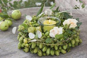 Grüner Hopfenkranz mit Rosenblueten : Humulus lupulus (Hopfen)