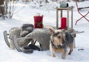 Schlitten im Schnee, Fell, Handschuhe, Thermoskanne im Filzmantel,