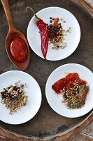 Three spice mixes and a spoon of barbecue sauce