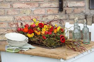 Rot-gelbes Tischgesteck mit Tulpen, Narzissen und Ranunkeln auf Moos und Zweigen