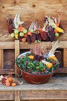 Girlande aus buntem Mais, Kastanien und Lampionfrüchten, Wanne mit Scheinbeere und Kürbis