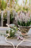 Knospenheide 'Pink Alicia' Gardengirls, Glaswindlicht liegt auf dem Tisch