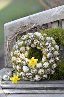Kränze aus Wachteleiern und Moos mit Narzissenblüten auf Gartenbank