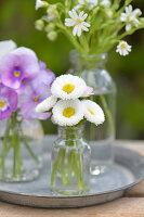 Bellis und Hornveilchen in kleinen Flaschen