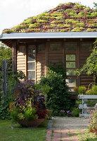 Gartenhaus mit Dachbegrünung, Schale mit Sommerbepflanzung