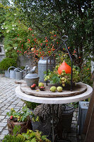 Herbstdeko im Innenhof mit Kürbis, Hagebutten, Hopfenranke und Kastanien