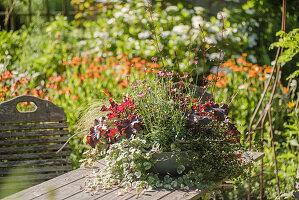 Bepflanzte Schale auf dem Gartentisch