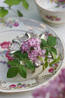 Fliedrblüte und Rosenblätter in silbernem Eierbecher