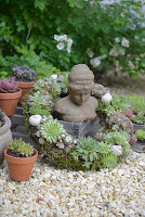 Kranz aus verschiedenen Hauswurz-Pflanzen mit Moos und Schneckenhäuschen