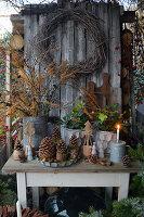 Weihnachtliche Dekoration mit Lärchenzweigen, Kranz aus Birke, Zapfen, Christrosen und Holzbäumchen auf Tisch im Garten
