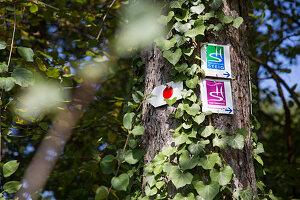 Hinweisschilder für Wanderer auf Baumstamm