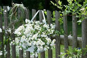 Schneeflockenblume und Graskranz als Willkommen am Zaun