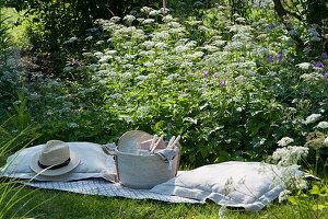 Picknick im Naturgarten: blühender Giersch, Decke, Kissen, Hut, Korb mit Besteck, Teller und Gläsern