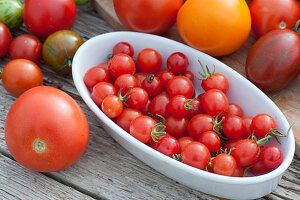 Tomatenvielfalt: Kirschtomaten, rote runde Tomaten, Cocktailtomaten, gelbe Tomaten und gestreifte Tomaten