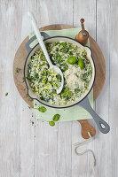 Kräuter-Risotto mit Parmesan