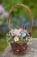 Frühlingsstrauß mit Akelei, Vergißmeinnicht, Wiesenkerbel, Schnittlauchblüten, Erdbeerblüte und Knöterich im Korb