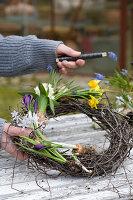 Frau bindet Kranz mit Traubenhyazinthen, Hyazinthe, Narzisse, Krokus und Milchstern auf dem Gartentisch