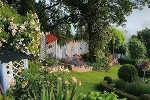 Hanggarten mit Ramblerrosen 'Ghislaine de Feligonde' und 'Lykkefund', englische Rose 'Crown Princess Margareta', Katzenminze, Lavendel, überdachtes Regal als Arbeitsplatz